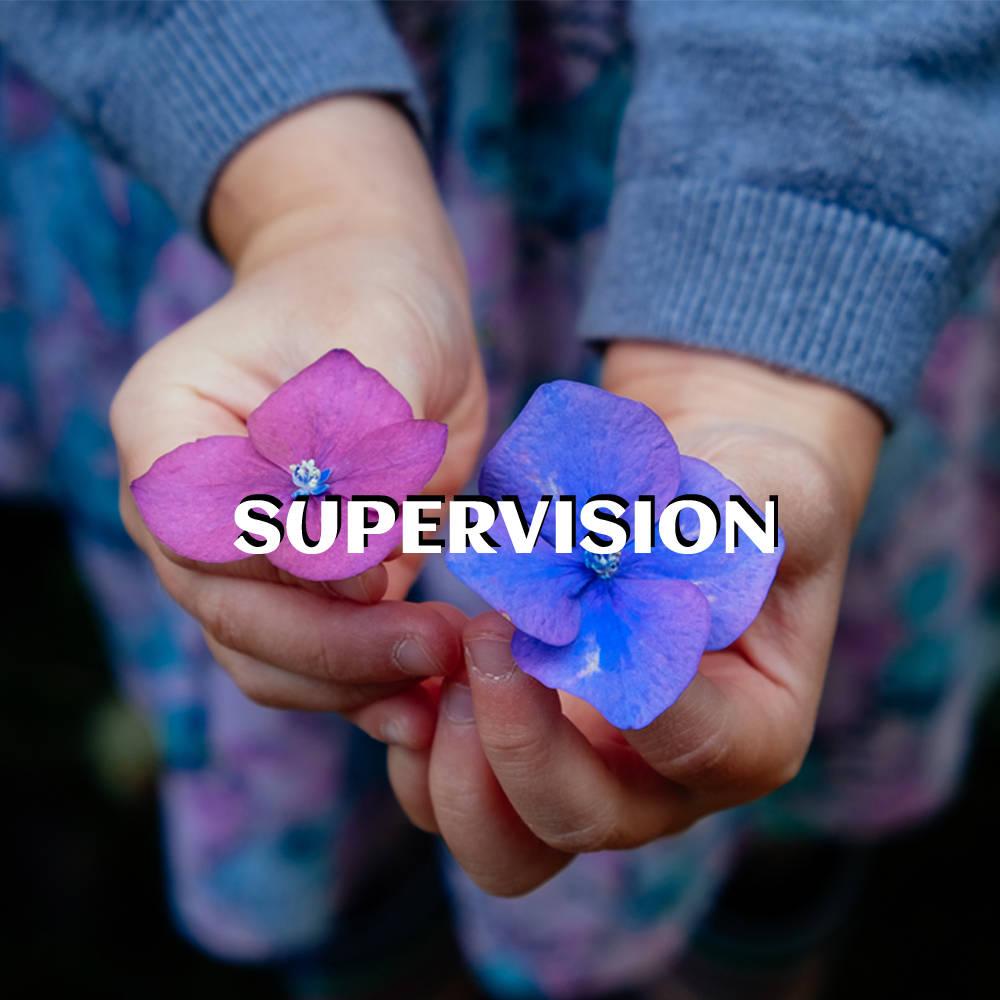 Supervision with Su Orosa